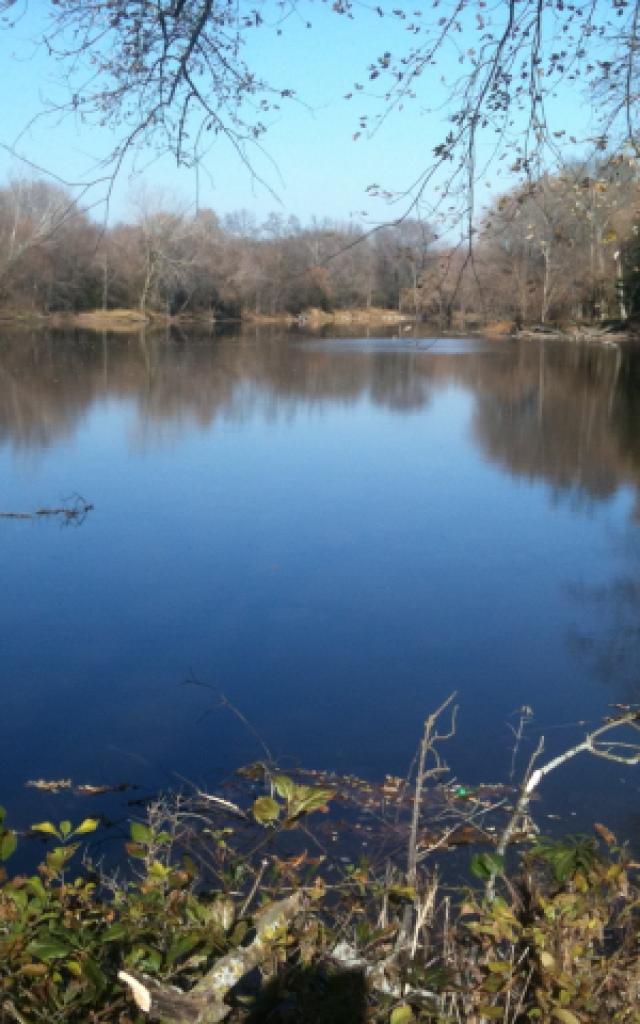 fall-walk_river.jpg