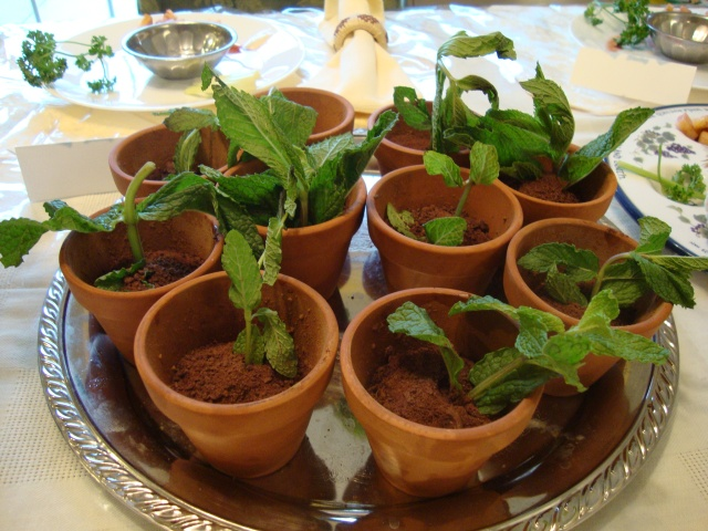 An edible plant! I saved the flower pots to use again! It looked so real... they fooled everyone! :)