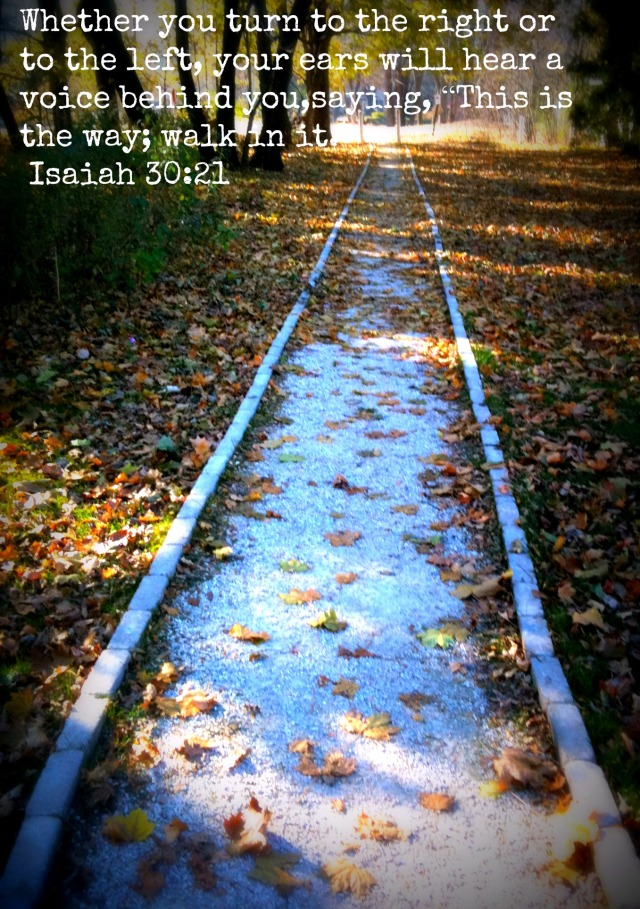 Path_in_Fall_With_Verse