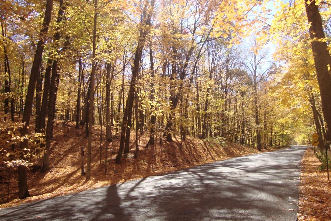 fall-2012-113_hh_road