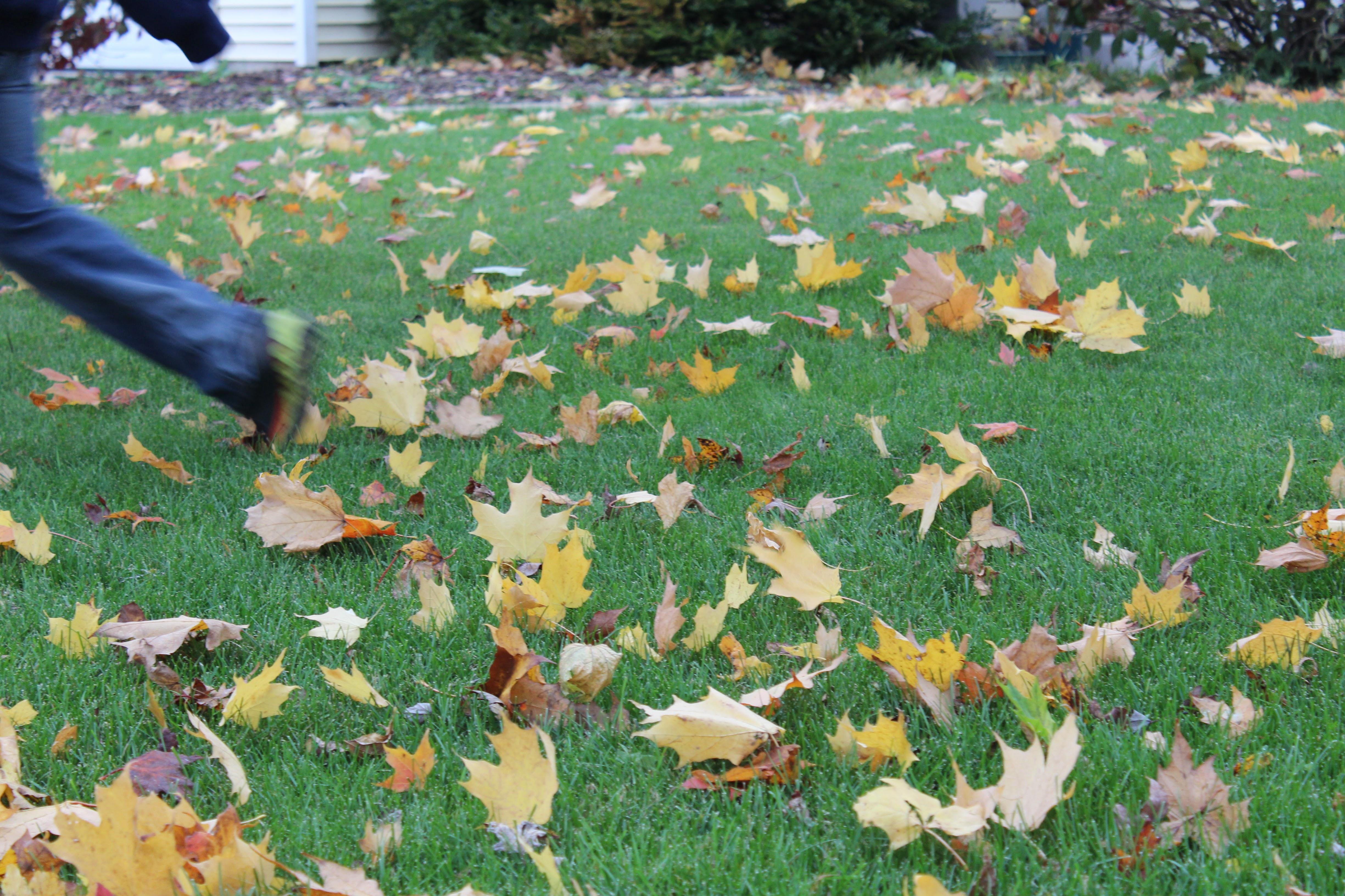 fall_running