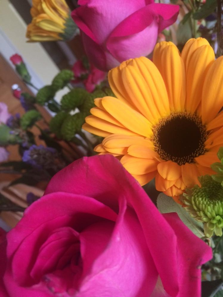 flowers-pinkroses