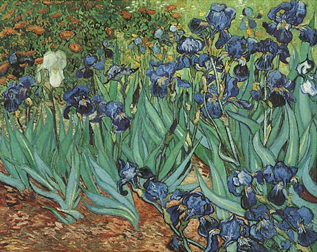 VanGogh_Irises