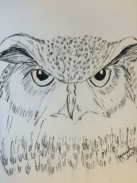 pen_owlJPG