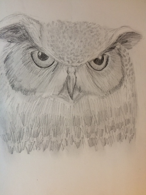 pencilowl