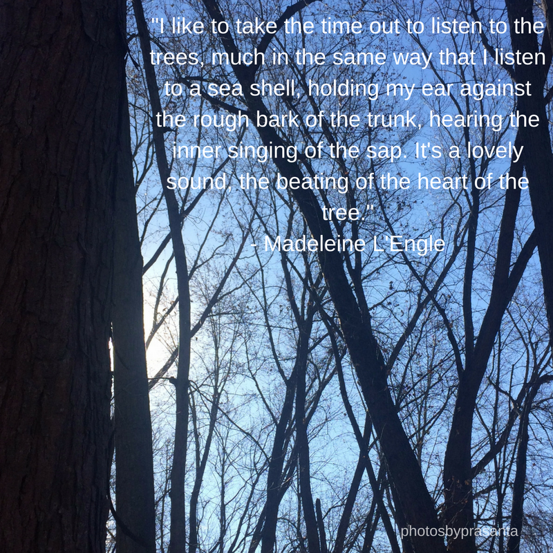 Tree quote by L'Engle