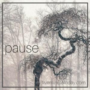 pause-fmf