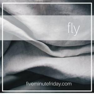 fly image- fmf