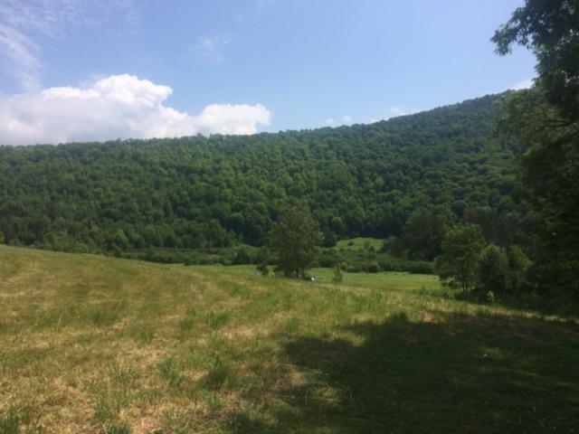Vermonthills